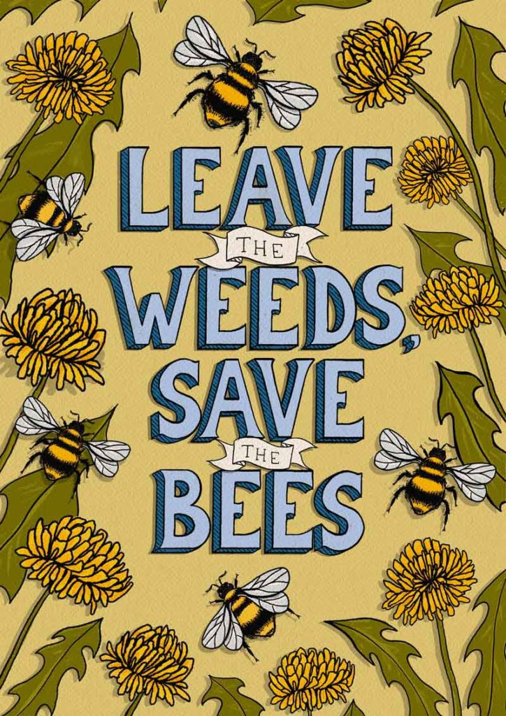 leave the weeds save the bees ashley peterson