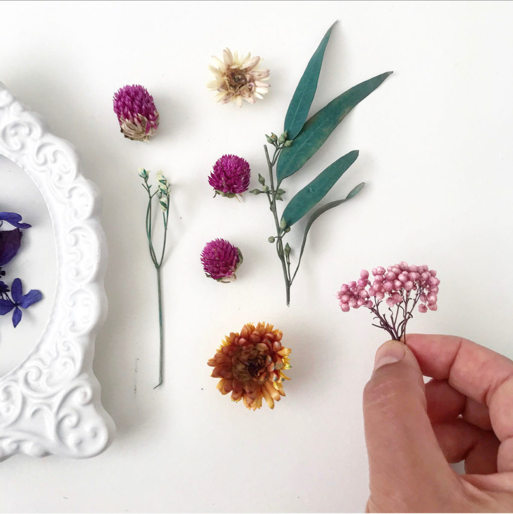 beautiful dried flowers for resin